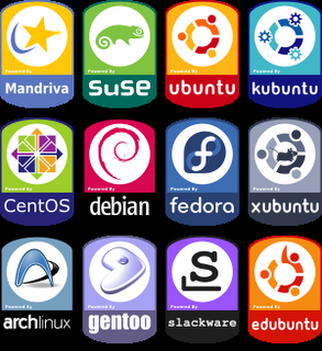 Las 10 distribuciones de Linux más usadas
